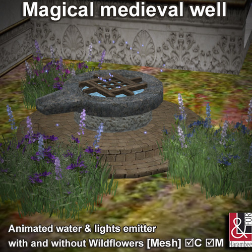 Magical medieval well