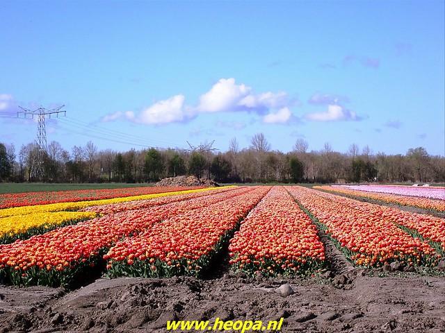 2021-04-17 Almere bolleveld 28 Km  (38)