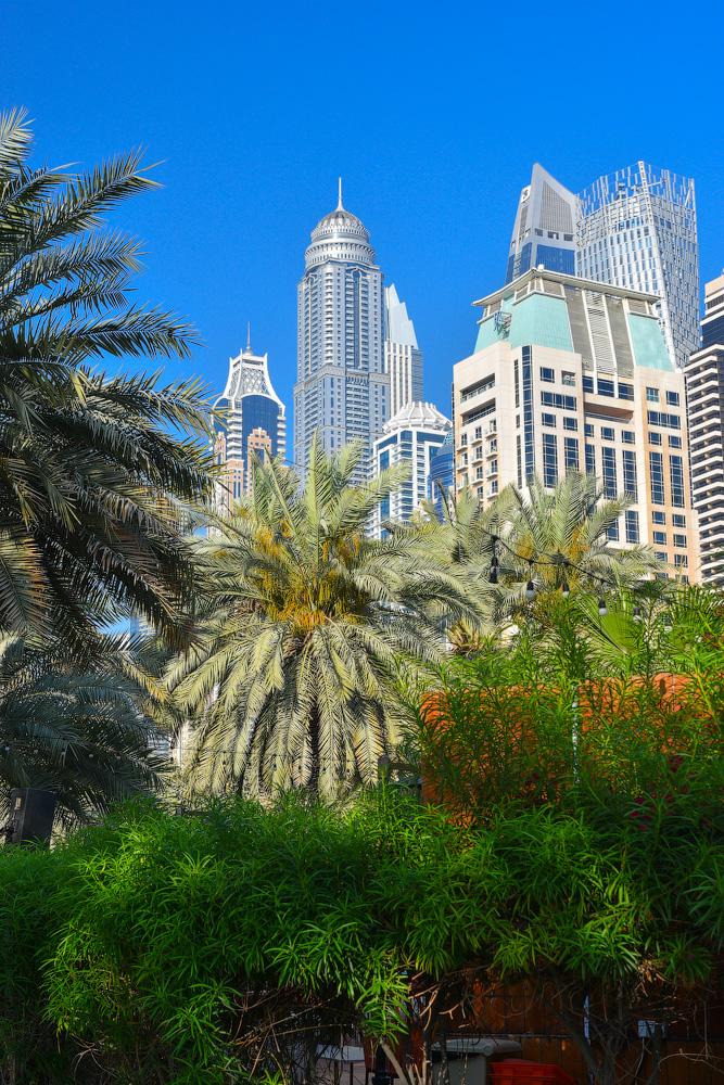 Dubai-Thesisen-(46)