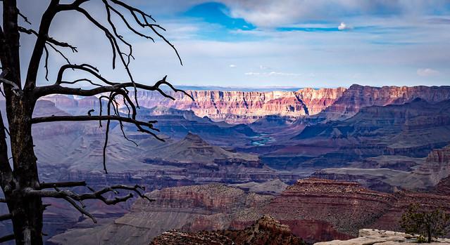 The Majestic Grand Canyon & the Colorado River