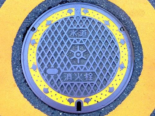 Tokyo Tokyo Metropolis manhole cover 4(東京都区部のマンホール4)