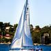Sail-boat near Sydney Harbour Bridge