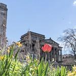 Spring Preston