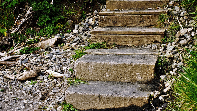 Steps to the Creek
