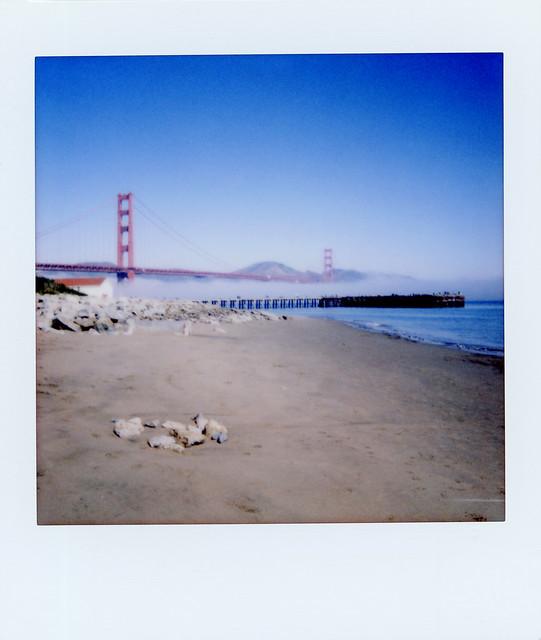 Low Fog at the Golden Gate Bridge