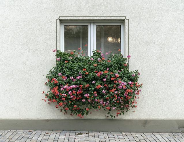 Humprechtshausen, 2018