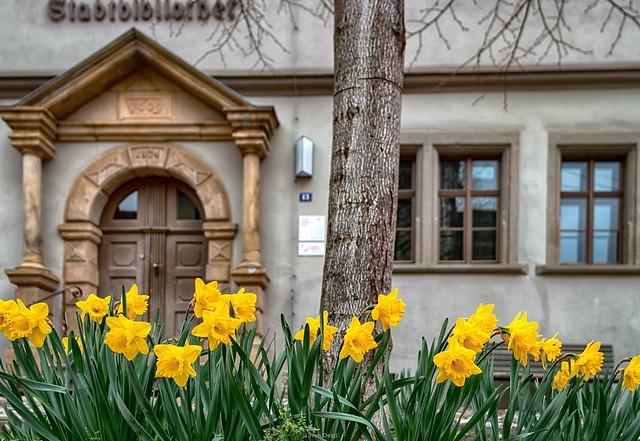 Stadtbibliothek Rudolstadt