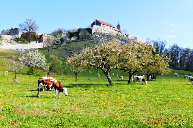 04.19.21.Châteaux des Allinges (France)