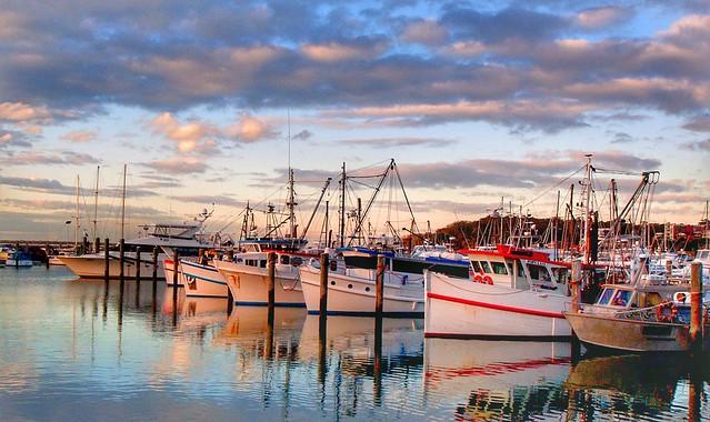 Nelson Bay NSW. Aust.
