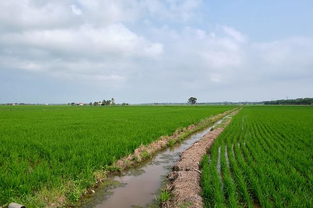 Kampung Sungai Hj Dorani
