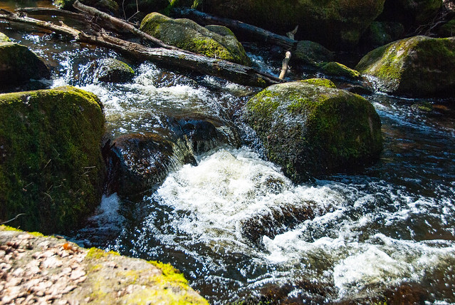 Hiking - Brennberg
