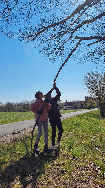 tak weer aan boom vastmaken