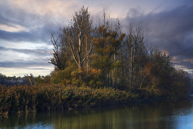 Autumn moments....   Dunasziget - Hungary