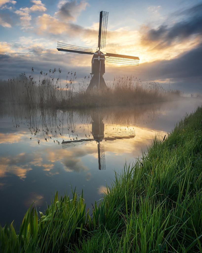 Season of Fog