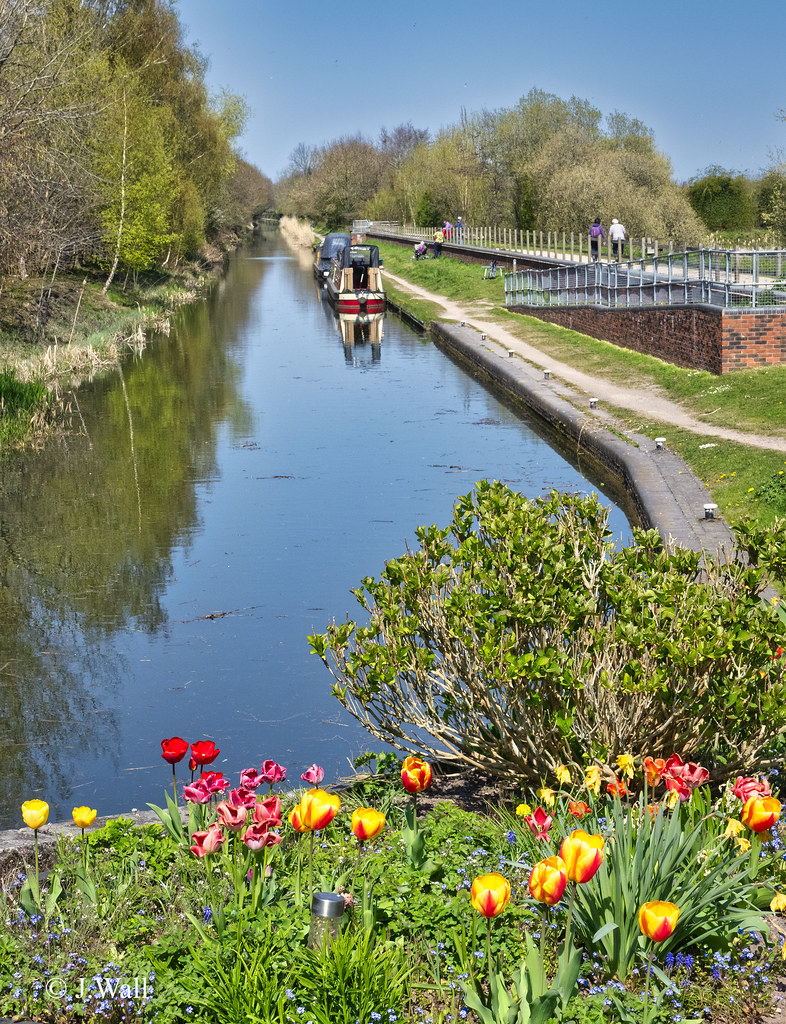 Fazeley Canal April 2021 pic7