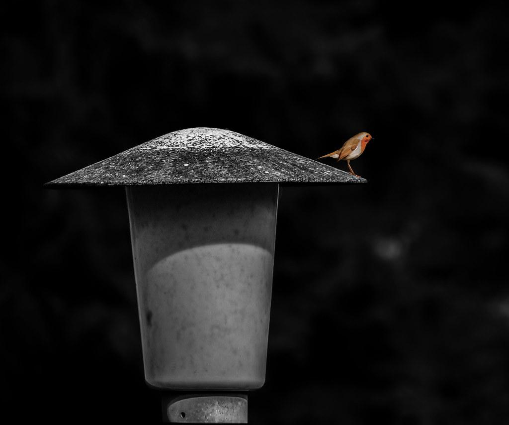 Vor der Kaserne, vor dem grossen Tor, Stand eine Laterne und steht sie noch davor. So wollen wir uns wieder sehn, Bei der Laterne wollen wir stehn,…/ In front of the barracks, in front of the great gate, There was a lantern and it is still in front of it.