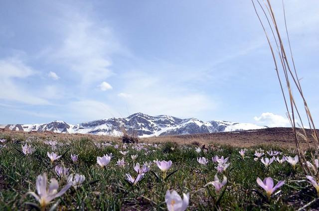 Kurdistan  landscape Nature