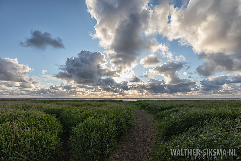 Kwelderlandschap, Friesland