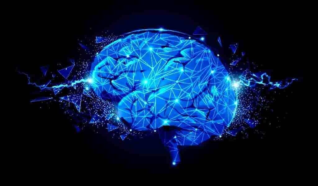 Un petit outil implantable pour l'imagerie cérébrale