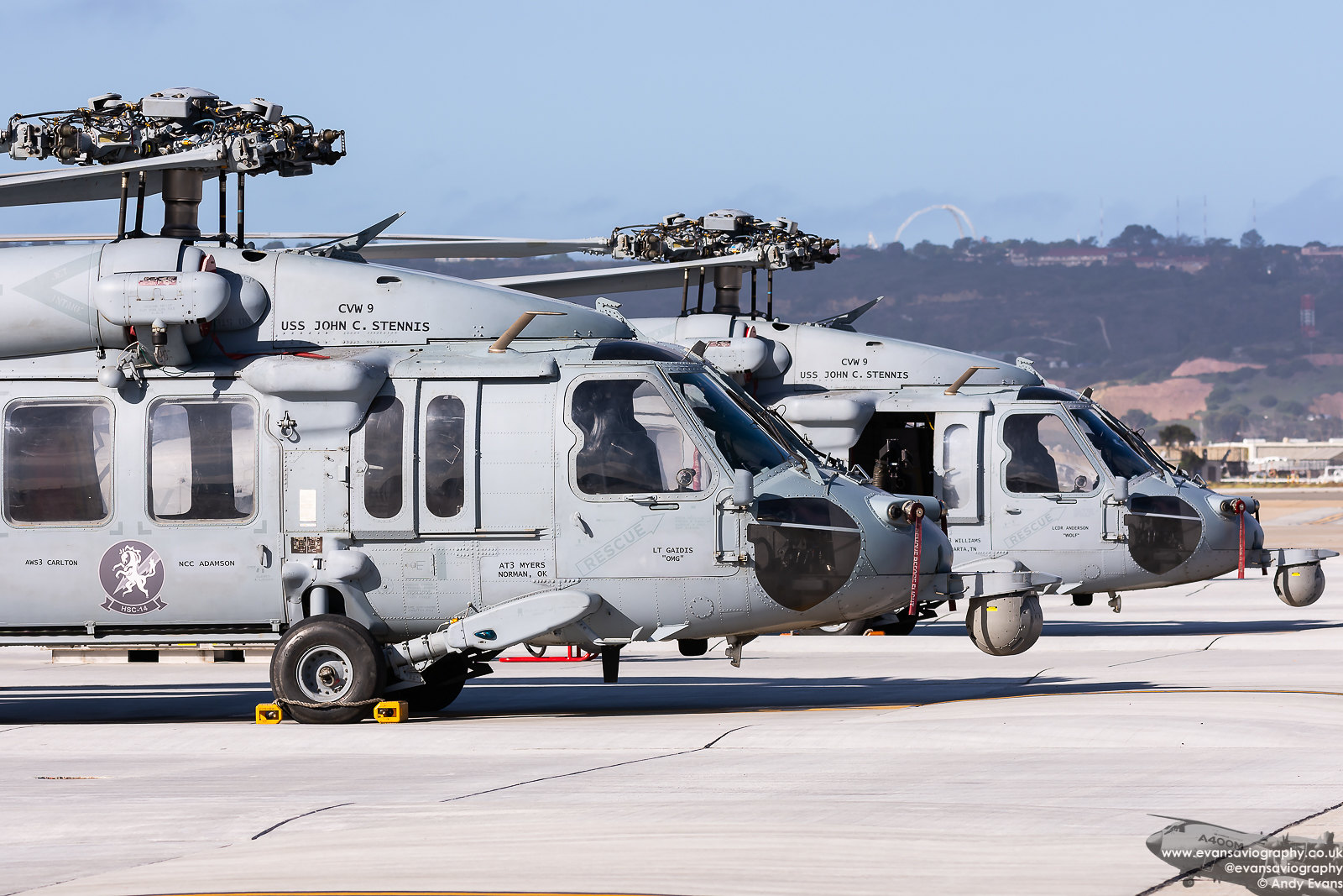 Pair of MH-60S