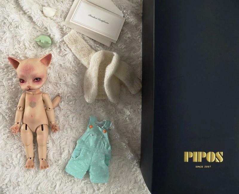 [Vente]Chat Baha Pipos caramel/Panda Asleep Eidolon 51126301520_391646a744_o