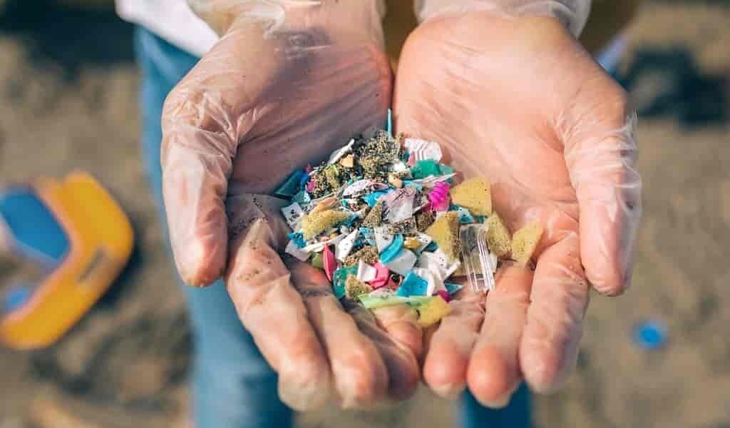 Les effets des microplastiques chez l'humain