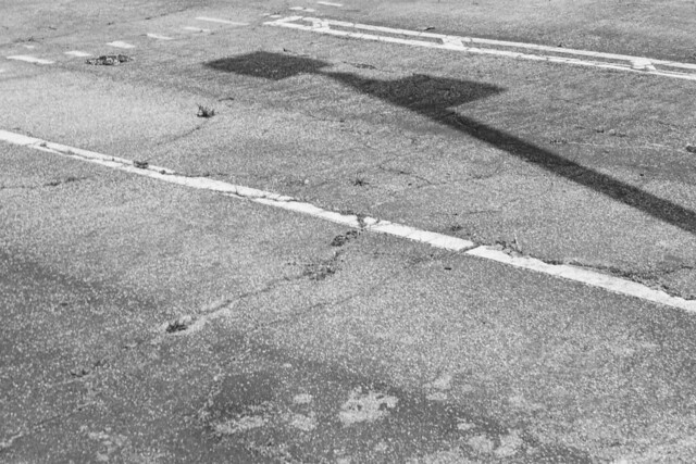 Shadows On Pavement in Black & White