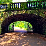 Ivy bridge at Avenham Park in Preston