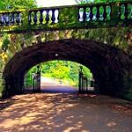 Ivy bridge at Avenham Park in Preston