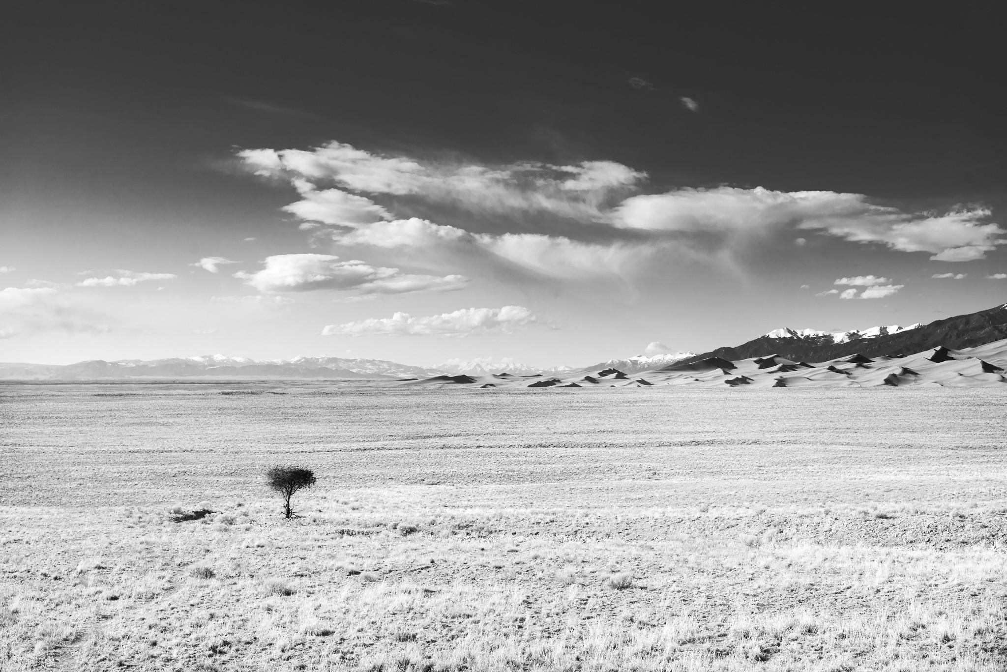 Infrared Sand Dunes