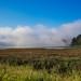 Your Local Neighborhood Physics Teacher posted a photo:Bolinas Lagoon fog break#foggymorning #fog #bolinaslagoon #westmarin #marincounty