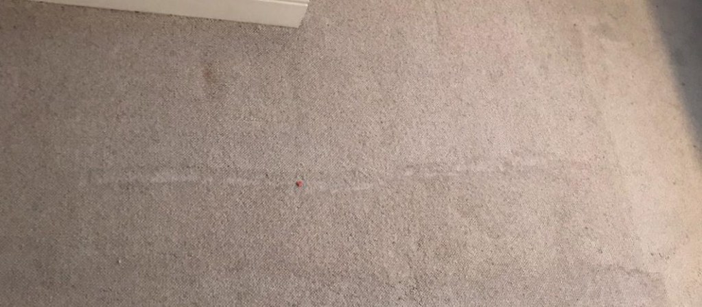 Carpet Cleaning Greenhills