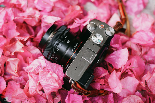 巡遊日夜的光彩:Sony FE 24mm F2.8 G, 40mm F2.5 G, 50mm F2.5 G | 77