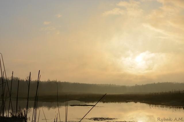 Sunrise over a dying lake.