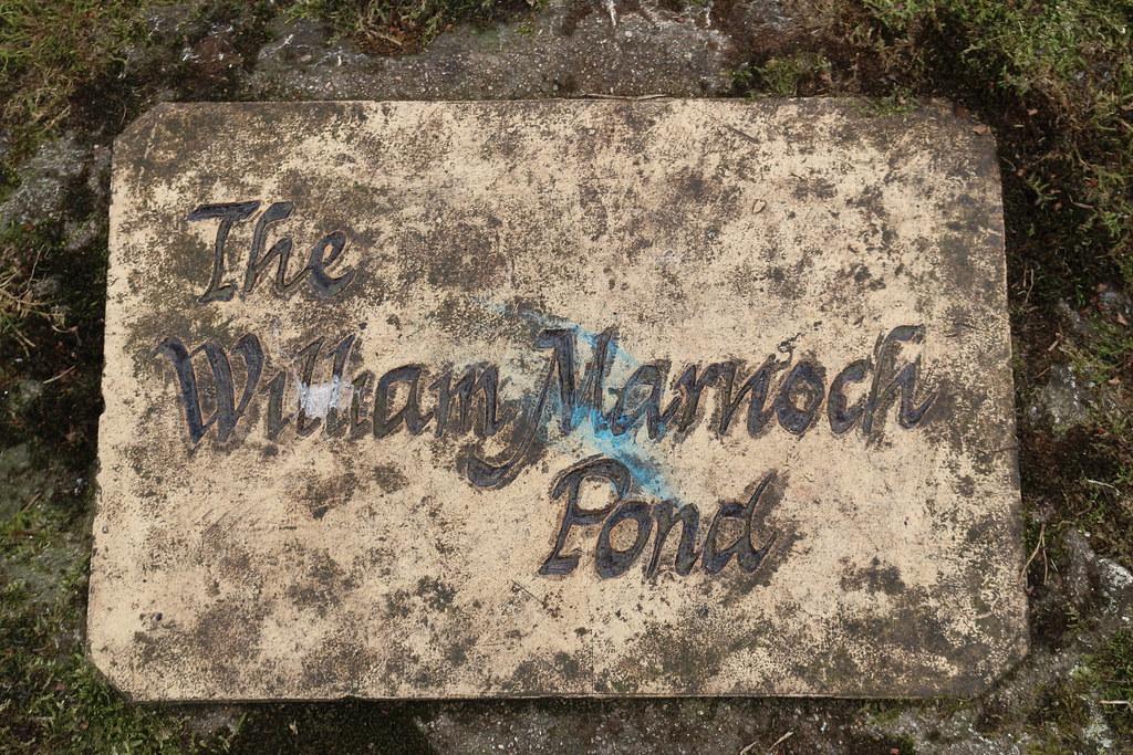 William Marnoch Pond,Murray Park,Alford_apr 21_5983
