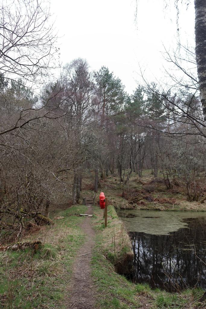 William Marnoch Pond,Murray Park,Alford_apr 21_5991