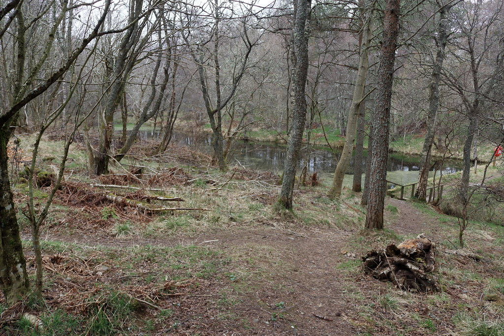 William Marnoch Pond,Murray Park,Alford_apr 21_5994