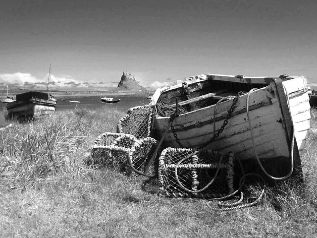 Northumberland, Lindesfarne (64)B
