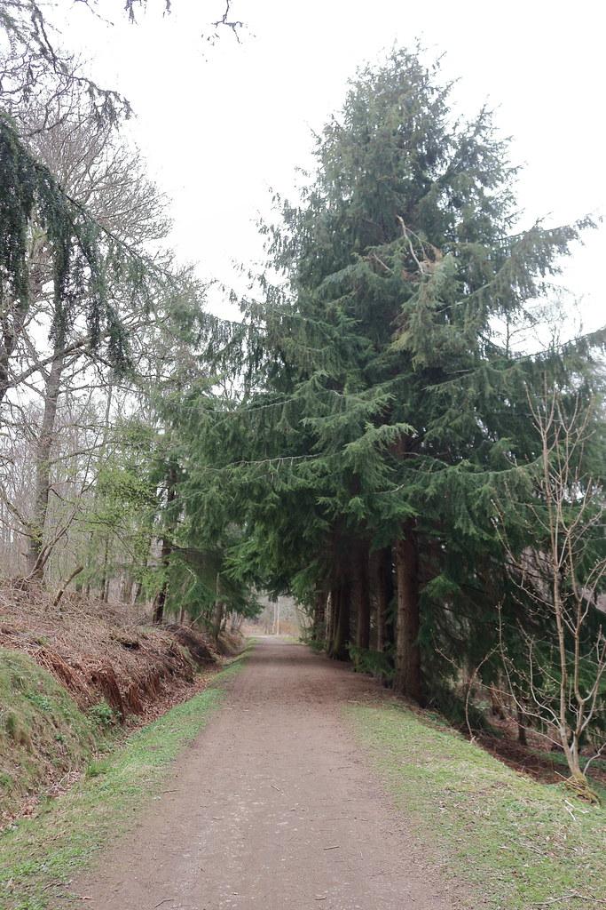 Murray Park,Alford_apr 21_6005