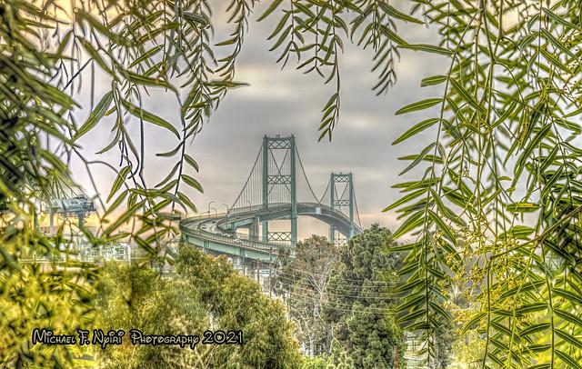 Vincent Thomas Bridge with Natural Frame