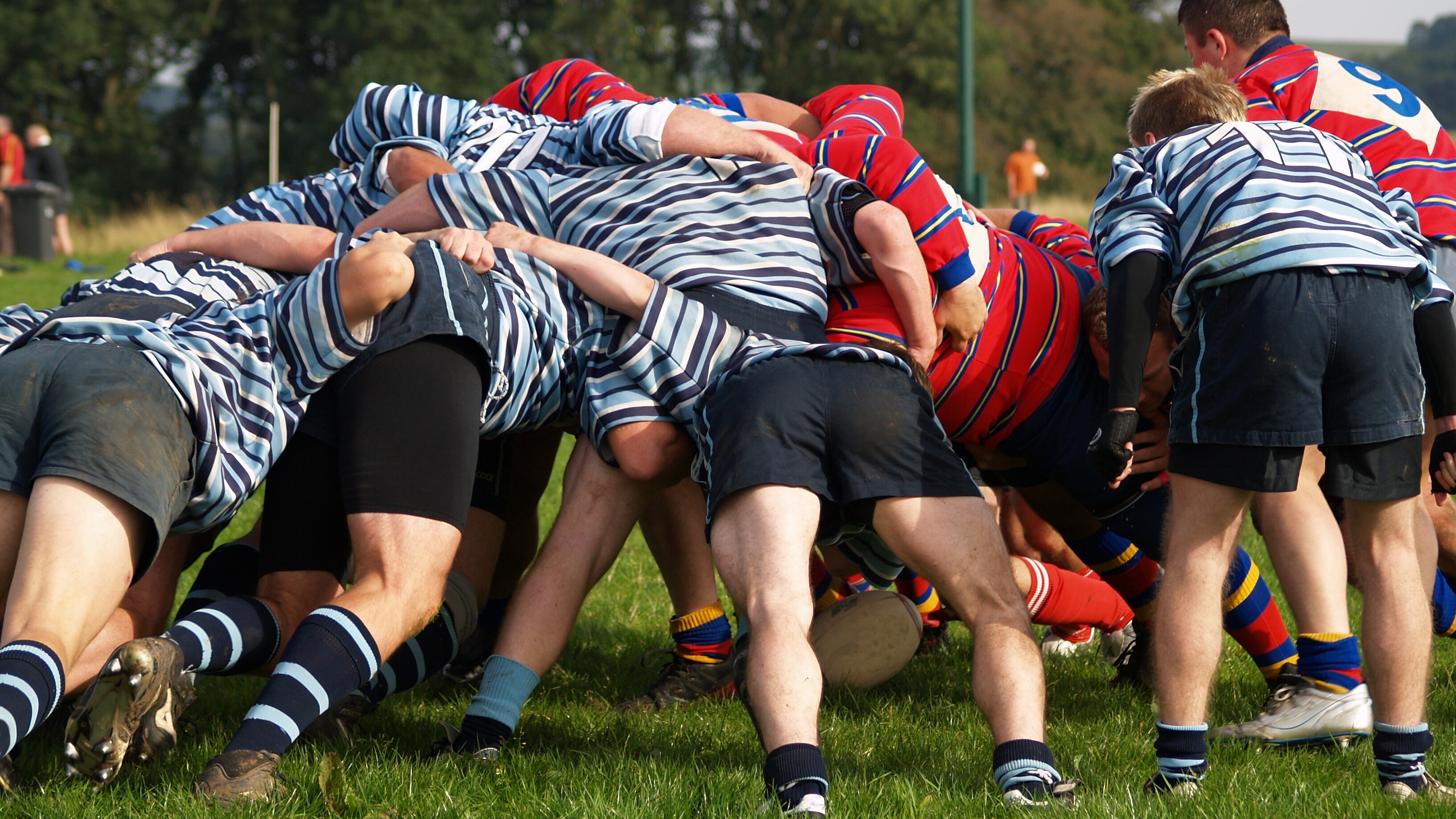 Rugby players push against each other in the scrum
