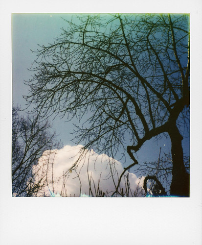 Sky ...