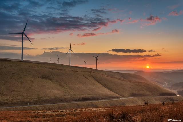 Golden hour wind power