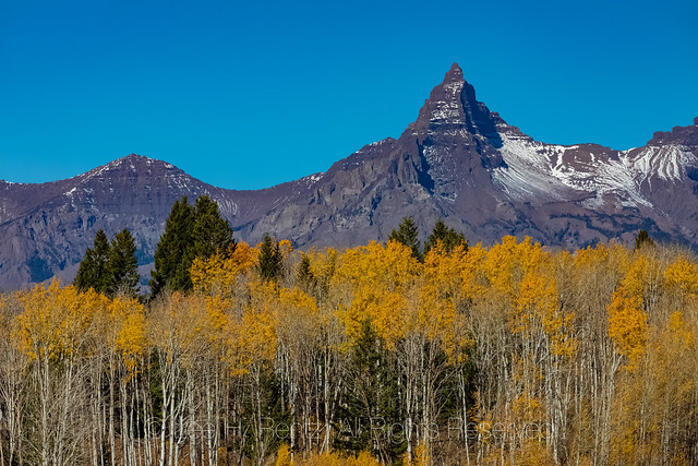 Peaks and Aspen Colors above the Beartooth Highway