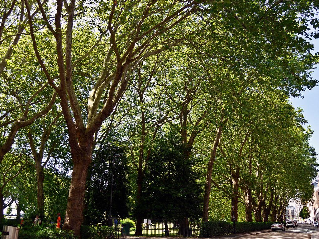 photo - Queens Park, Southampton, England