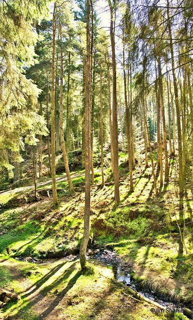 Beecraig country park Scotland
