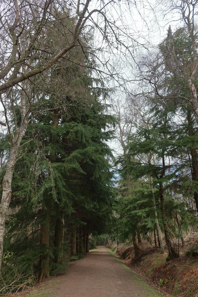 Murray Park,Alford_apr 21_6000