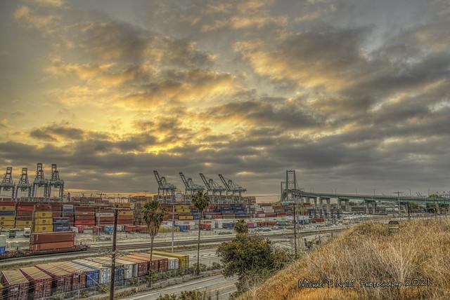 Golden Harbor Morning