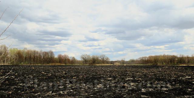 burned prairie 2