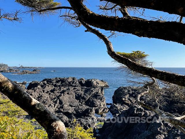 Black Rock Oceanfront Resort-17